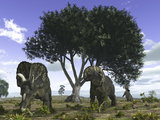 Nedoceratops Graze Beneath a Giant Oak Tree