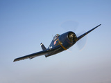 The Commemorative Air Force's F6F-5 Hellcat in Flight