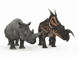 An Adult Einiosaurus Compared to a Modern Adult White Rhinoceros