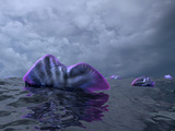 Portuguese Man O' War Swarm over the Surface of a Cambrian Ocean