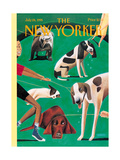 The New Yorker Cover - July 24  1995
