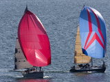 Sailboats Flying Spinnakers Near a Race Finish Line