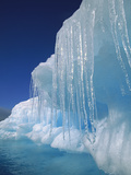 Icicles Hanging from Iceberg  Petermann Island  Antarctic Peninsula  Antarctica