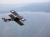 A Replica WWI-Era Sopwith 1-1/2 Strutter Flies over New York State