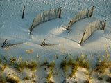 Fences Cast Shadows on Dunes