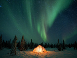 Northern Lights or Aurora Borealis over Illuminated Tent  Boreal Forest  North America