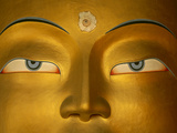 Maitreya  Close Up of Statue Head  Buddha  Tikse Monastery  Ladakh  India  Himalayas