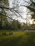 Late Afternoon in Piedmont Park in Midtown  Atlanta