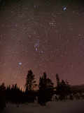 Stars Above Upper Geyser Basin in Yellowstone National Park