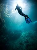 A Freediver in a Fresh Water Sinkhole Far Inland in the Yucatan