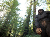 Legend of Bigfoot Roadside Attraction Outside Richardson State Park