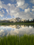 Mammoth Peak and Scattered Clouds Reflected in Lake  Yosemite National Park  California