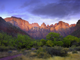 Towers of the Virgin  Zion National Park  Utah