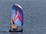 Sailboat Flying Spinnaker During a Race