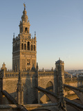 View of the Giralda Tower and the Rooftop of the Cathedral of Seville
