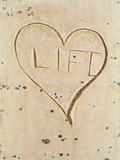 """Carved """"Life"""" Symbol and Heart in an Aspen Tree"""