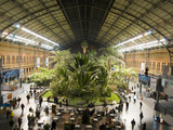 Overview of the Old Section of Atocha Station in Madrid