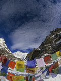 Prayer Flags on Gotcha La (5000m) Kangchenjunga  Sikkim Himalaya  India