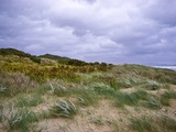 Winter Storm Winds Buffet a Sand Dune Covered in Marram Grass