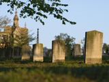 Morning Light on Tombstones and Tombs in the Oakland Cemetery  Atlanta