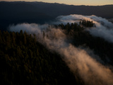 Aerials over Headwaters Forest Reserve