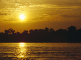 Sunset over Lowland Tropical Rainforest Along Amazon River  Amazon Basin  Brazil