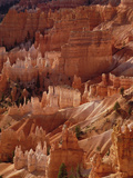 Hoodoo Formations from Sunrise Point  Bryce Canyon National Park  Utah