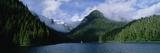 Conifer-Covered Coastline of Warm Springs  Baranof Island  Inside Passage  Alaska