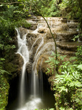 Waterfall in a Tributary of the Salobra River  Brazil