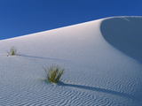 White Dunes in Gypsum Dune Field  White Sands National Monument  New Mexico