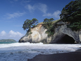 Cathedral Cove  Coromandel Peninsula  North Island  New Zealand