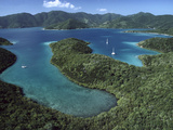 Aerial View of Hurricane Bay  Virgin Islands National Park  St John Island