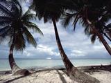 Cruise Ship Off West Coast of Tobago  Caribbean