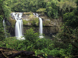 Tchupalla Falls in the Upper Section of Henrietta Creek  Palmerston National Park  Australia