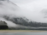 Clouds and Mist over Forest  Admiralty Island National Monument  Inside Passage  Alaska