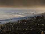 King Penguins and Elephant Seals Cover Saint Andrews Beach