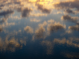 Clouds Reflections in Water  Chincoteague National Wildlife Refuge