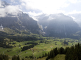 Alpweg Meadows Above the Grindelwald Valley