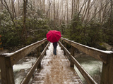 Girl Walking across a Wooden Bridge During a Spring Snowfall