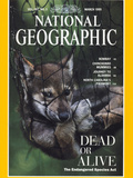 Cover of the March  1995 National Geographic Magazine