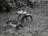 A Tricycle Missing Handlebars in Summer Grass