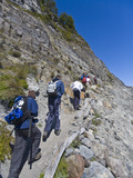 A Group of Hikers Ascend a Mountain Side in Glacier National Park