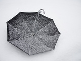 A Black Umbrella Fills with White Snow During the &quot;Blizzard of 2010&quot;