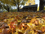 Historic Hartwell Tavern and Leaves in Autumn Hues
