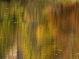 Reflections of Fall Colors in Eagleville Lake