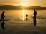 Parents and Child Walk in Shallow Water at Cremorne Beach at Sunset