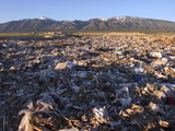 Salt Lake City&#39;s Garbage Dump on the Skull Valley Indian Reservation