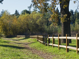 A Trail and a Wooden Fence on the Ojai Meadow Preserve