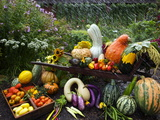 Vegetable Varieties at the Seed Savers Exchange