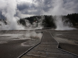 A Walkway Through a Steaming Landscape of Hot Sprigs and Geysers